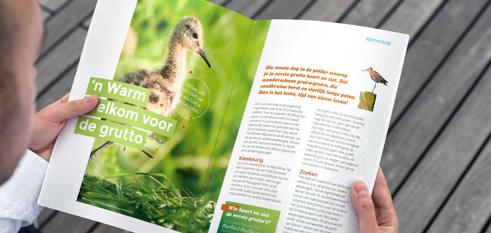 magazine het Zuid-Hollands landschap